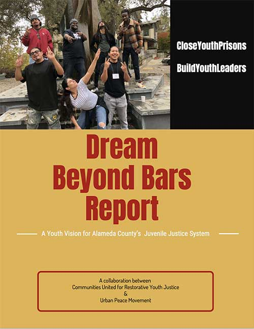 Dream Beyond Bars Report